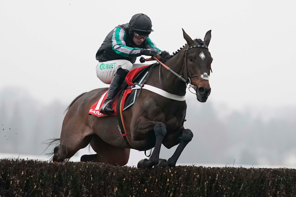 Altior won the Clarence House Chase at Ascot in 2019