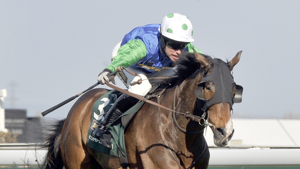 Comply Or Die won the 2008 Eider Chase before going on to win the Grand National the same year.