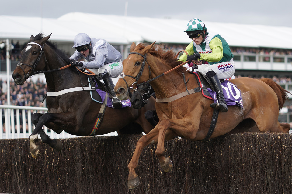 Second in the RSA last season, Santini can go one better in the Cheltenham Gold Cup in 2020.