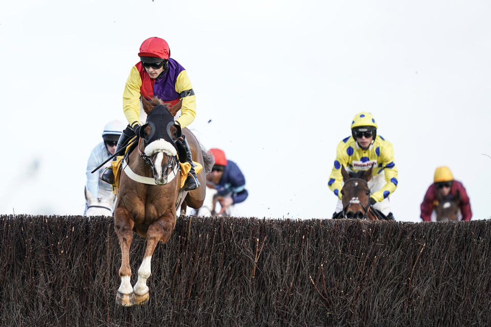 Native River won the Denman Chase in fine style at Newbury last weekend.