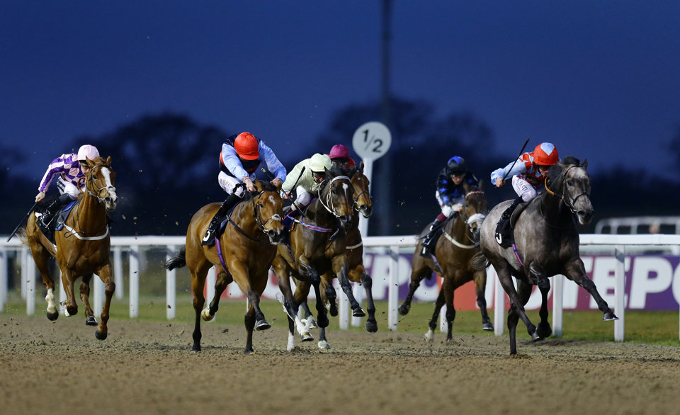 Tuesday's tips come from Chelmsford and Doncaster