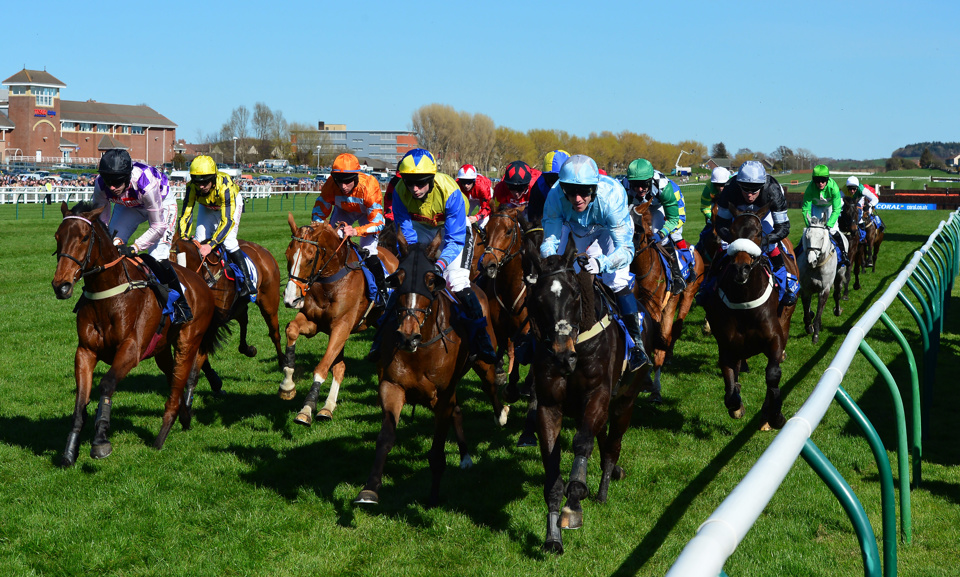 The Scottish Grand National is the biggest race of the season at Ayr Races