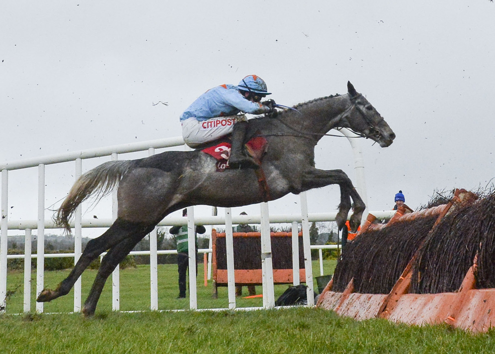 Bachasson was an eye-catching third in last month's Boyne Hurdle at Navan.