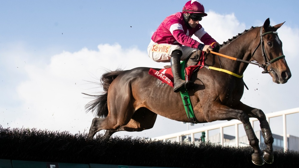 Punchestown Festival Day 3 Tips: Check out our best bets for Thursday.