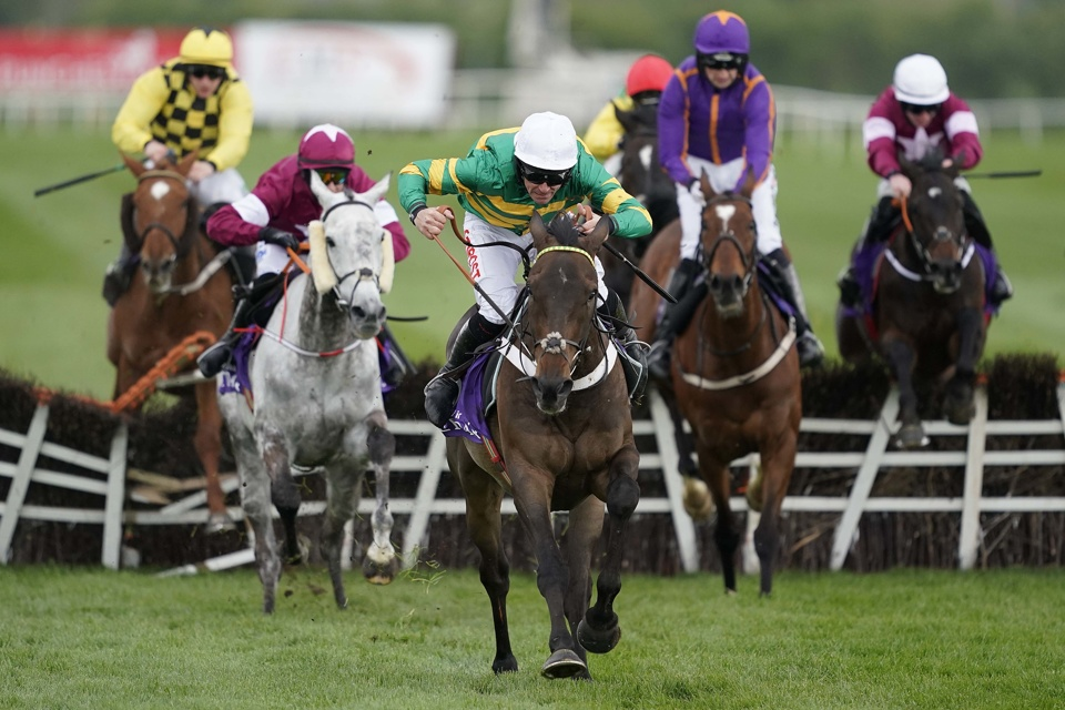 Buveur D'Air has won the Fighting Fifth Hurdle at Newcastle twice