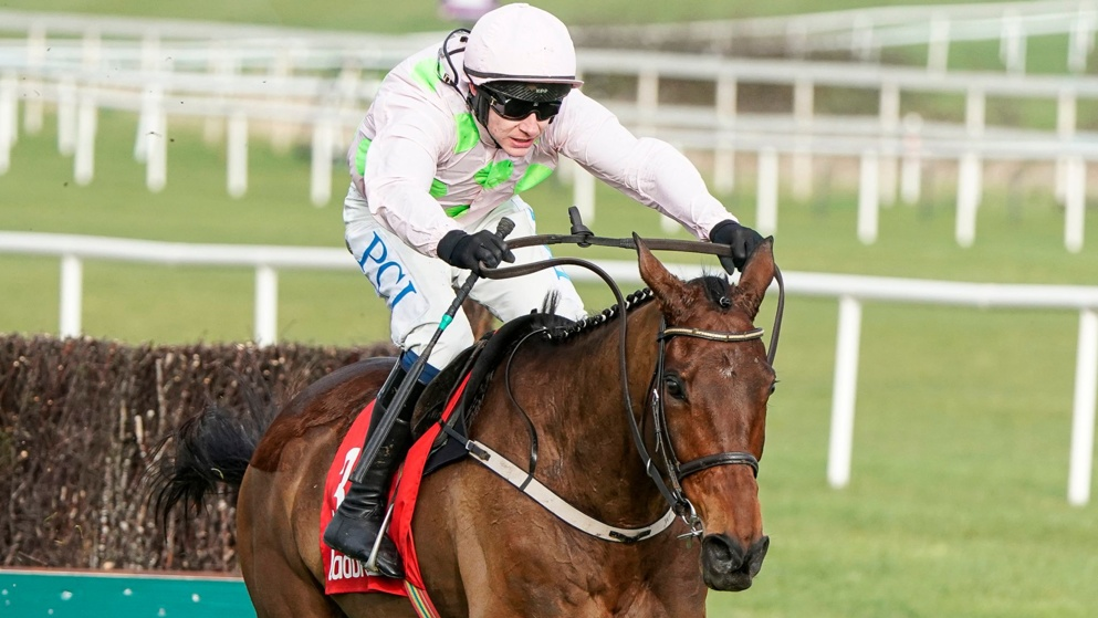 Chacun Pour Soi won the 2020 Dublin Chase at Leopardstown.
