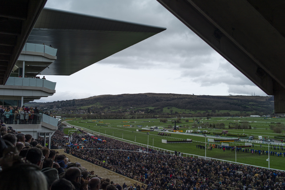 Today's racing tips come from Cheltenham.