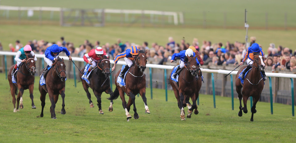 The first two classic races of the season are at Newmarket this weekend.