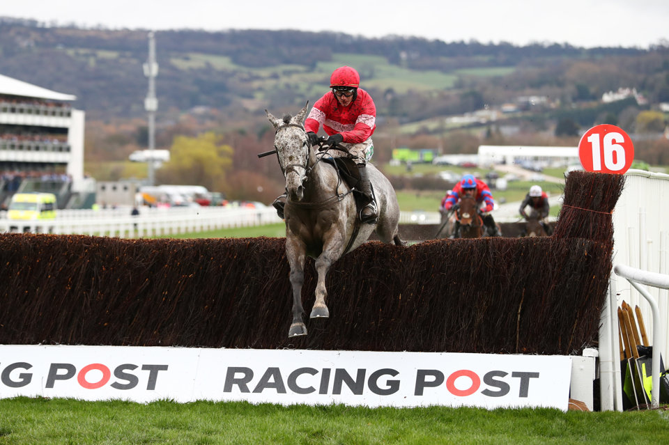 Duc Des Genievres won the 2019 Arkle Trophy for Paul Townend and Willie Mullins.