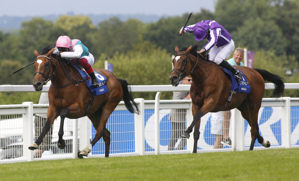 Coral eclipse stakes 2021 betting odds kentucky vs north carolina las vegas 2021 presidential betting