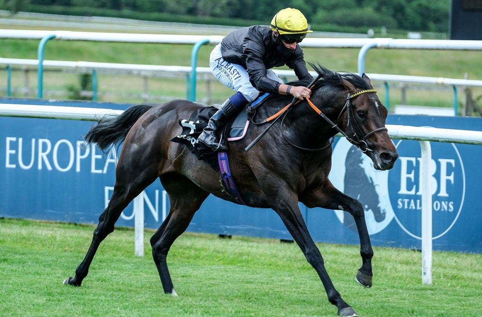 English King bids for St Leger glory at Doncaster.