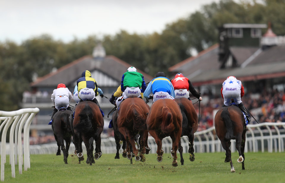 Today's Naps Table Tips come from Newmarket, Redcar and Newcastle