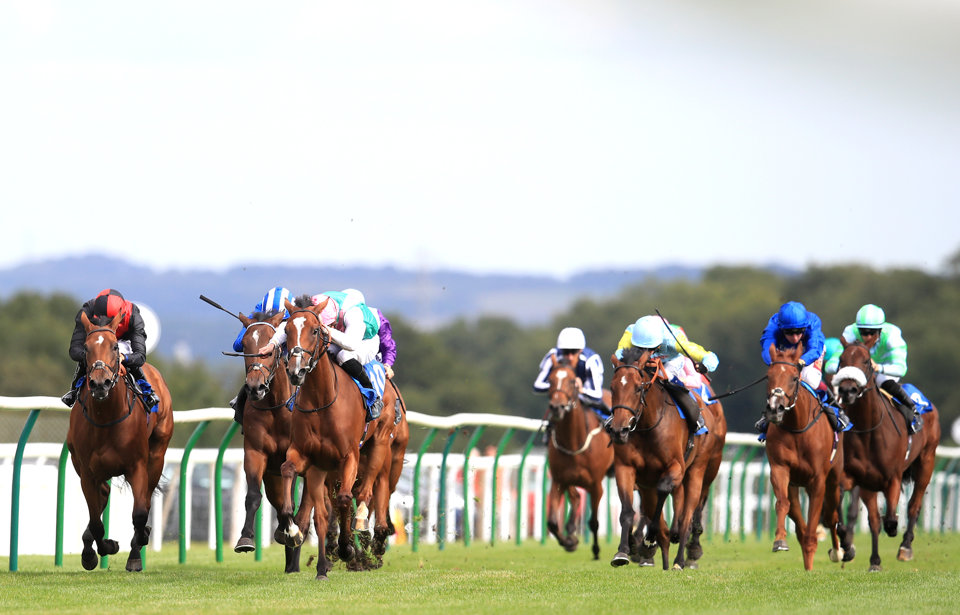 Today's horse racing tips at Ripon