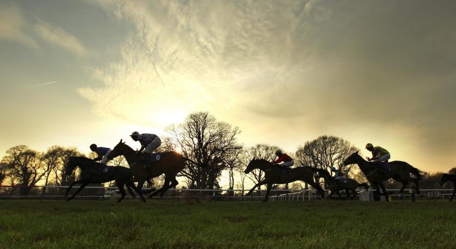 Results for every race at the Cheltenham Festival