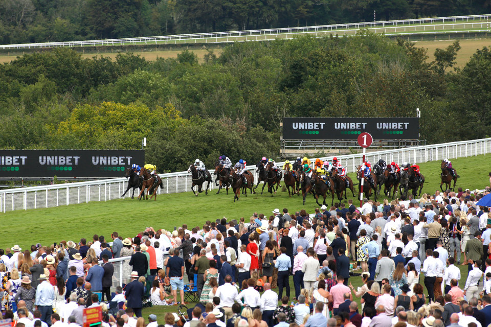 The Stewards' Cup is a sparkling betting heat for punters at Glorious Goodwood.