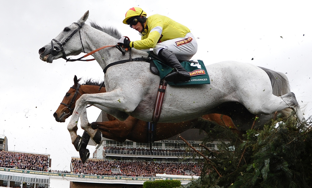 Neptune Collonges was the last grey horse to win the Grand National in 2012.