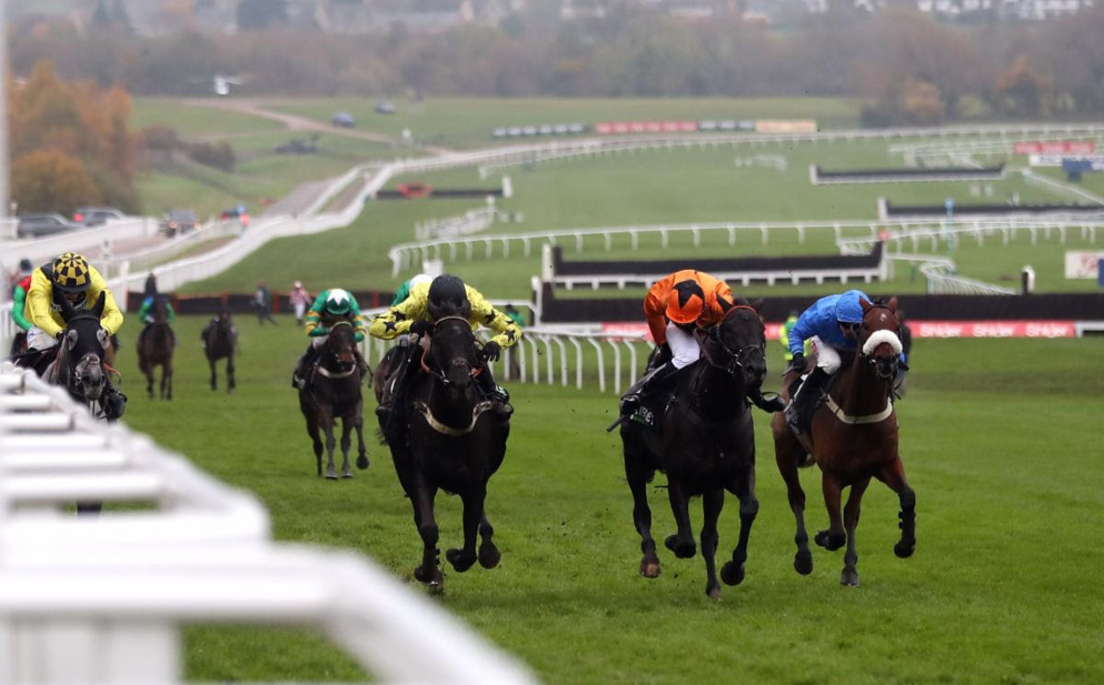 Harambe (black cap) won the 2019 Greatwood Hurdle for Alan King.