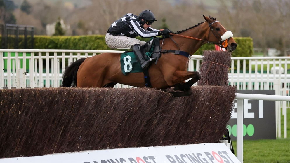 Ryanair Chase hope Imperial Aura runs in the Silviniaco Conti Chase at Kempton Park this weekend.