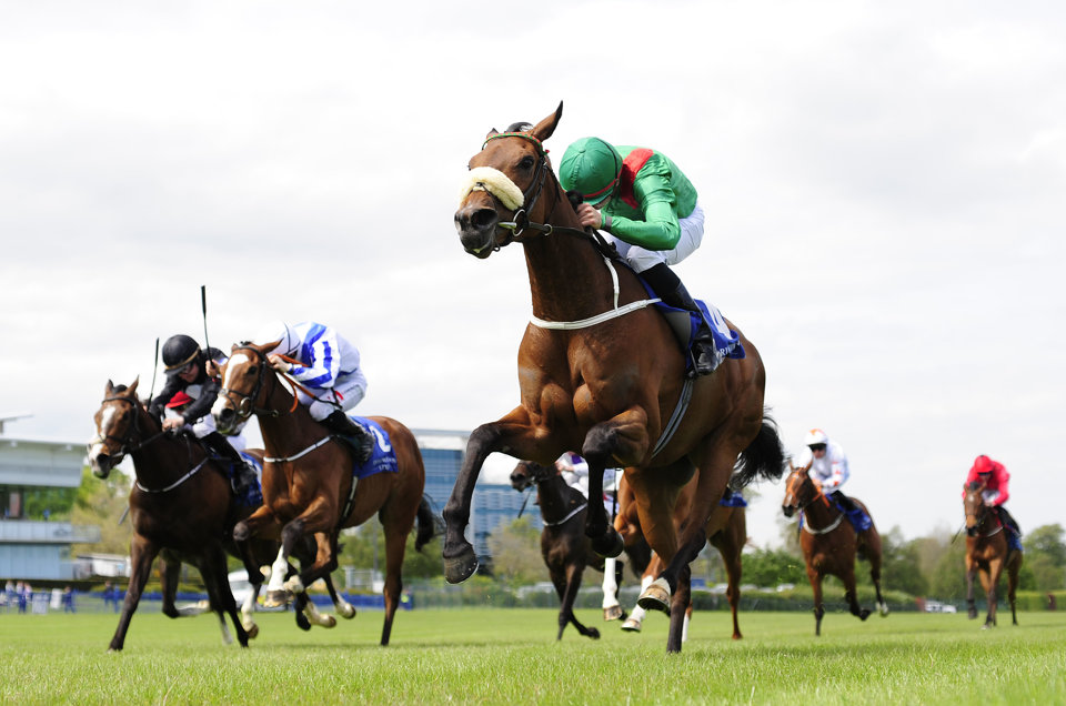 A star-studded field will line up for the Irish Champion Stakes at Leopardstown.