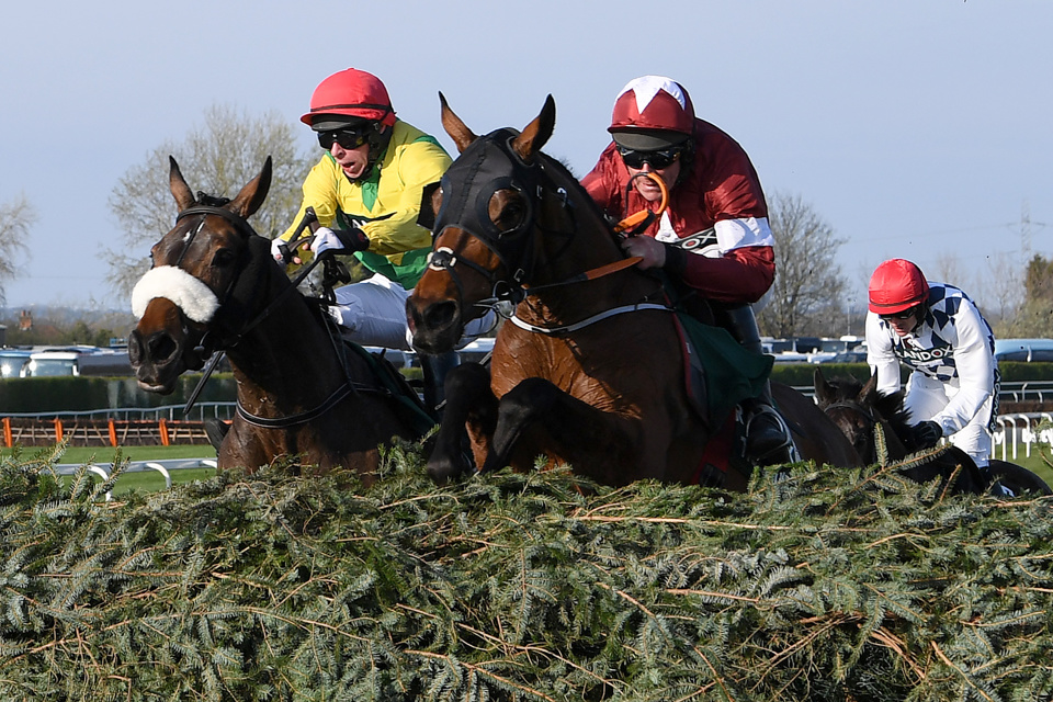 Tiger Roll is set to run over hurdles at Navan on Sunday.