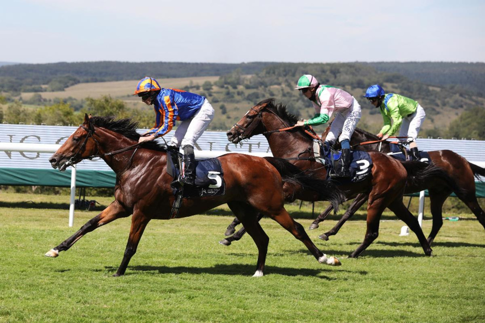 Prix de l'Arc de Triomphe Tips: Mogul impressed when winning the Grand Prix de Paris over the Arc course and distance last month.