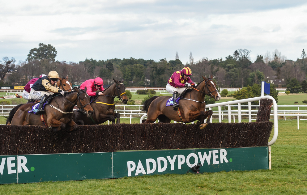 Monalee (right) is a lively outsider for the 2020 Cheltenham Gold Cup