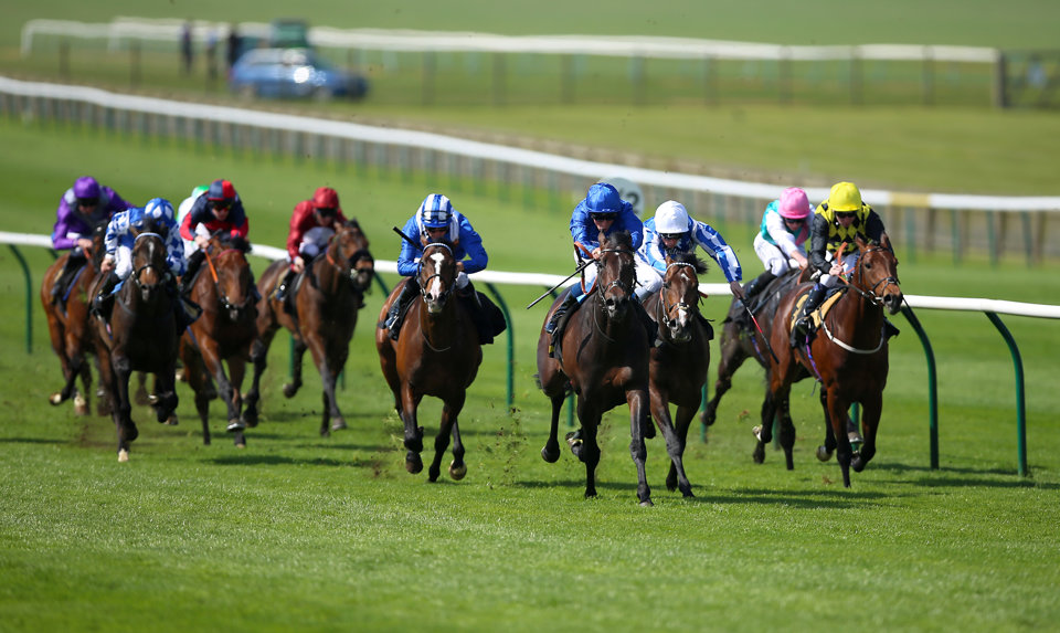 The Craven Stakes takes place at Newmarket in the early part of the Flat season.