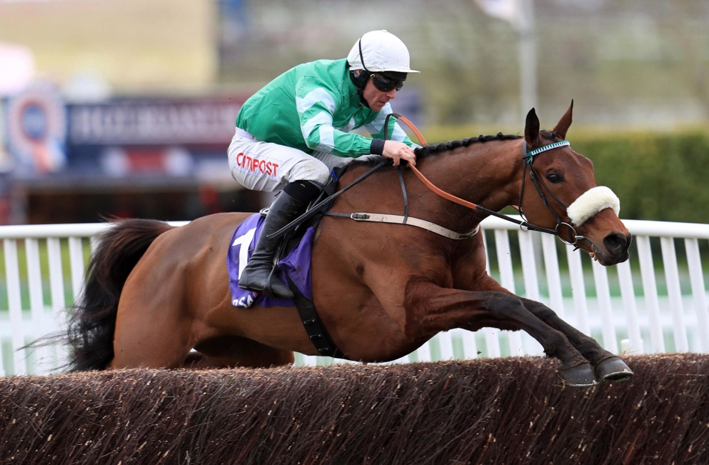 Presenting Percy impressed when winning at Thurles last month.