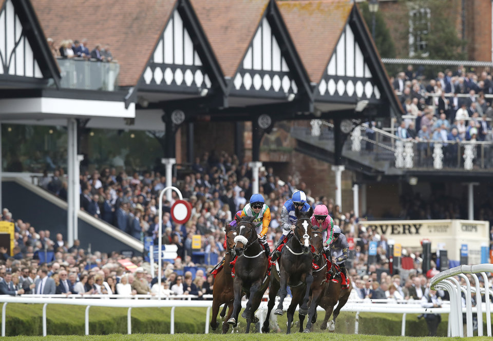 The Chester Vase is a Derby trial run at Chester in May.