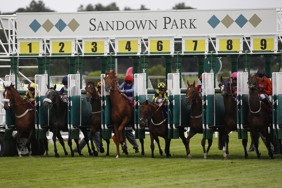 Two of our best bets run at Sandown on Wednesday.