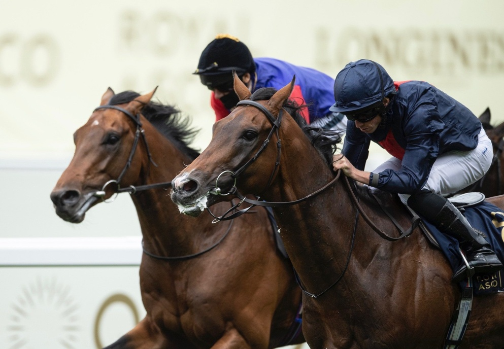 Russian Emperor was an impressive winner of last month's Hampton Court Stakes at Royal Ascot.
