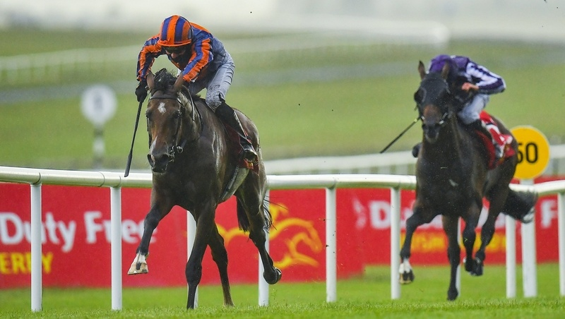 St Leger Tips: Santiago was a game winner of the Irish Derby at the Curragh in June.