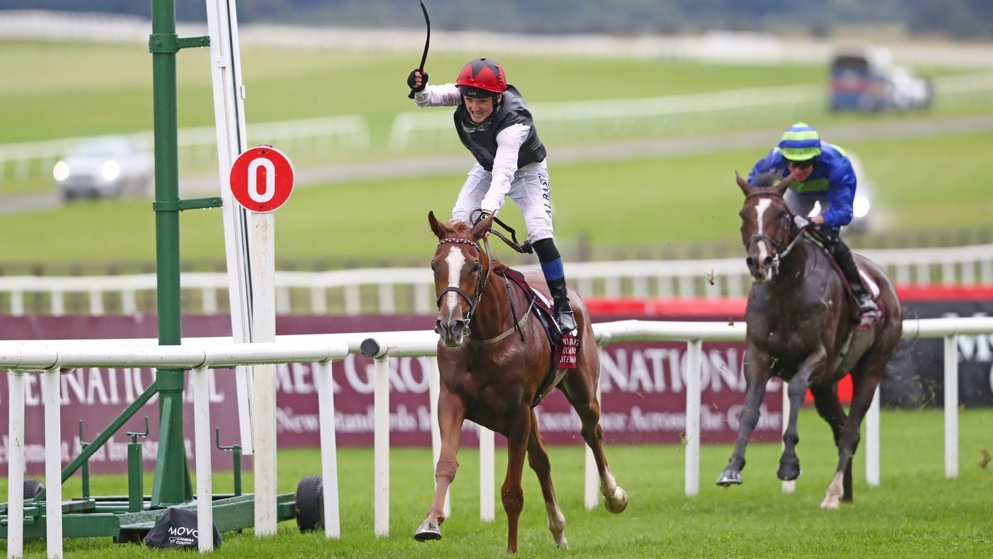 Search For A Song won the 2019 Irish St Leger for the Dermot Weld team.