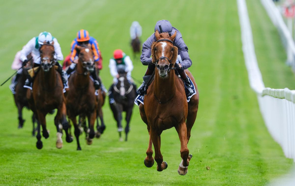 Serpentine was an emphatic winner of the Epsom Derby in July.