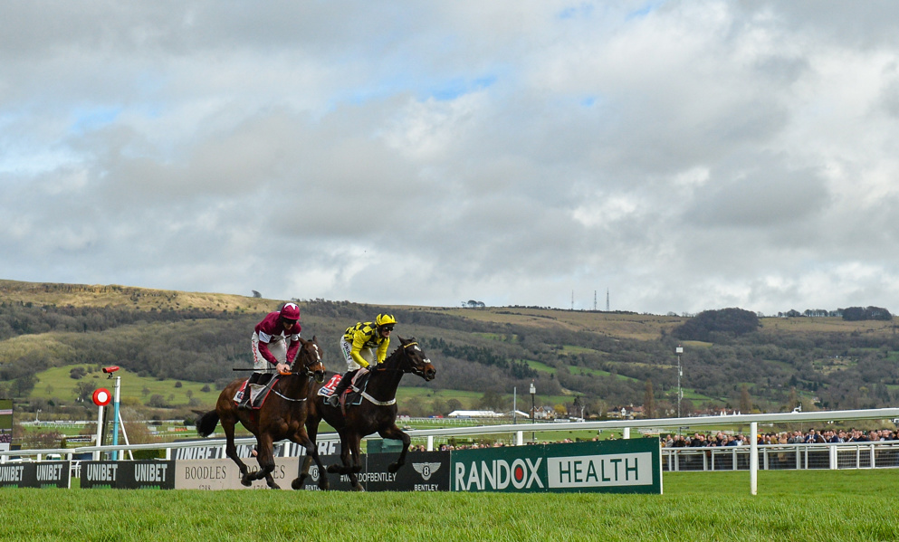Champion Hurdle Tips: Last year's Supreme runner-up Abacadabras is a lively each-way player in the Champion Hurdle.