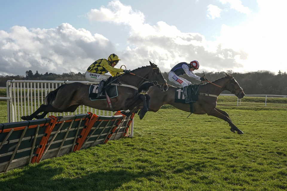 Tolworth Hurdle Tips: Shakem Up'Arry (far side) has shown some smart form over hurdles so far.