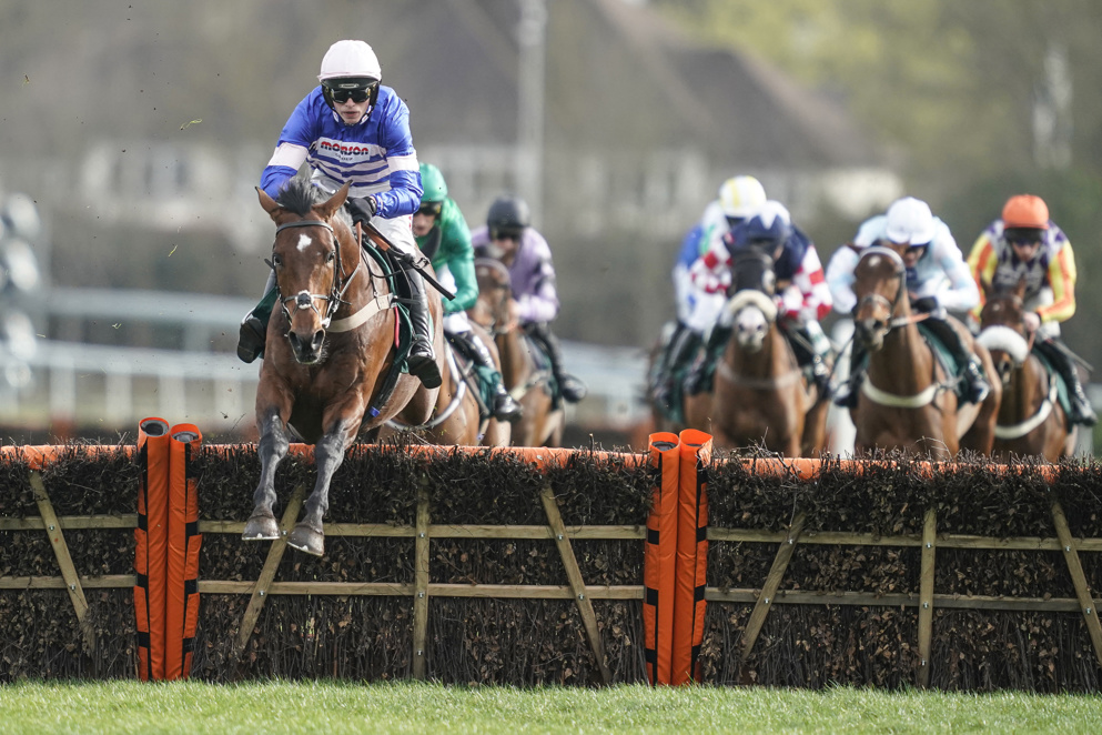 Elite Hurdle Tips: We pick out our best bet for the Elite Hurdle at Wincanton.