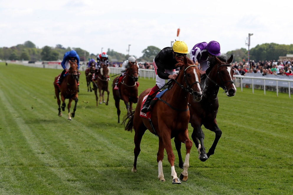 Stradivarius is aiming to win the Ascot Gold Cup for the third year running.
