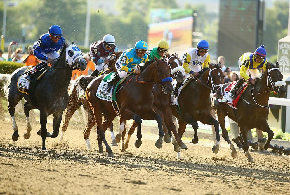 Parx racing betting odds betting bredevoortschitterd