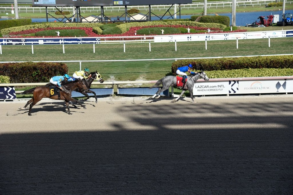 Gulfstream Park West kicks off the Friday action