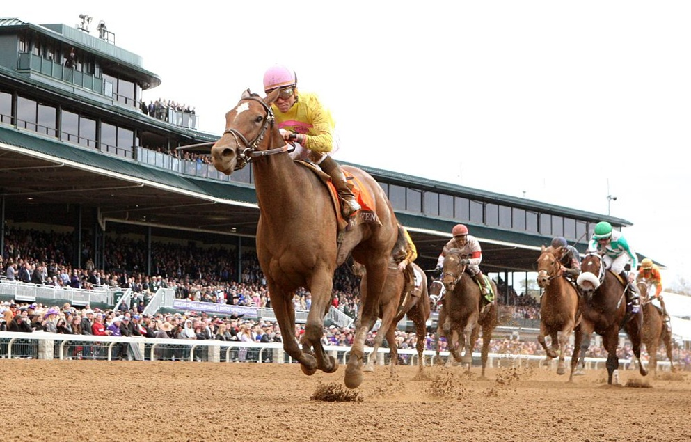 King Fury won at Keeneland last time out. Can his form follow up to Churchill Downs?