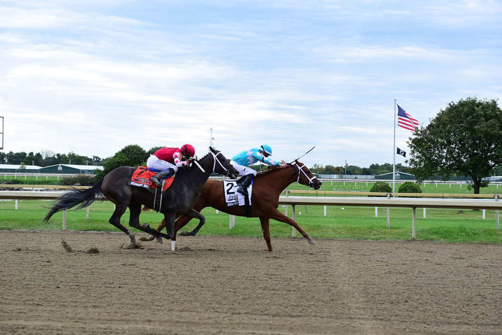 The Wednesday Edition of Parx brings 10-races that make for some fabulous opportunities to wager.