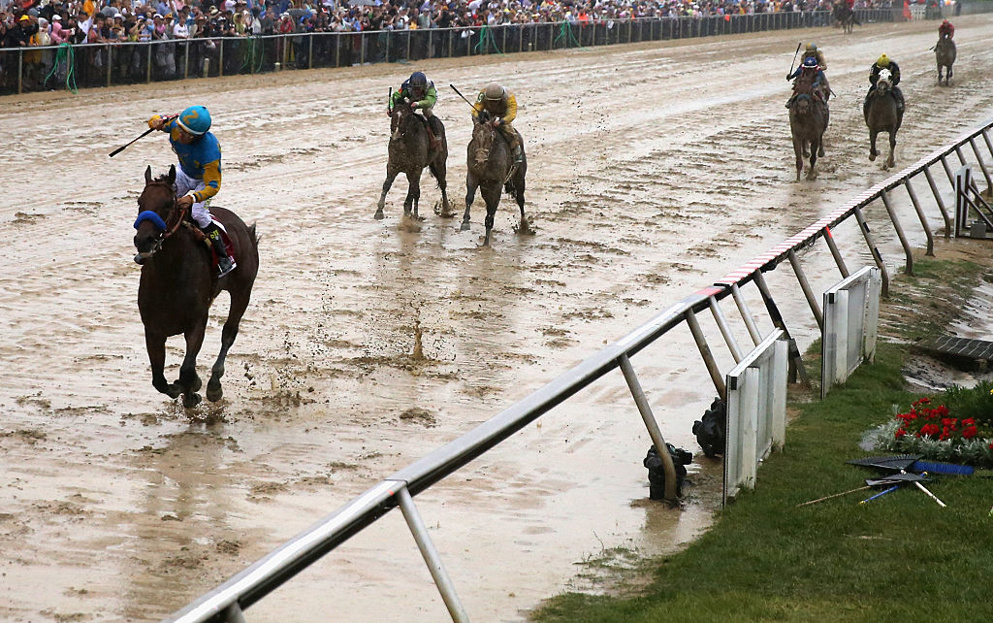 Liveyourbeastlife won't be at the pointy end of Preakness 145