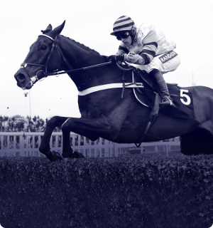 the jumps racing podcast banner